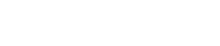 Performance Therapies | Physical Therapy Logo